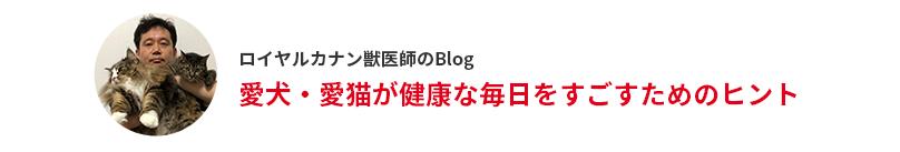 ロイヤルカナン獣医師のBlog
